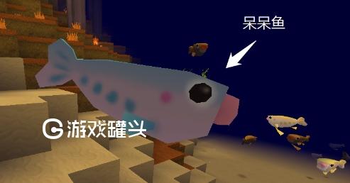 迷你世界鱼类大全 迷你世界鱼类怎么繁殖